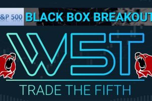 ES Black box short