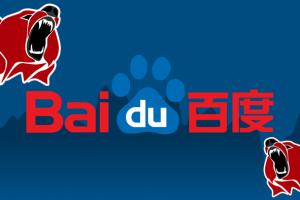 BIDU header